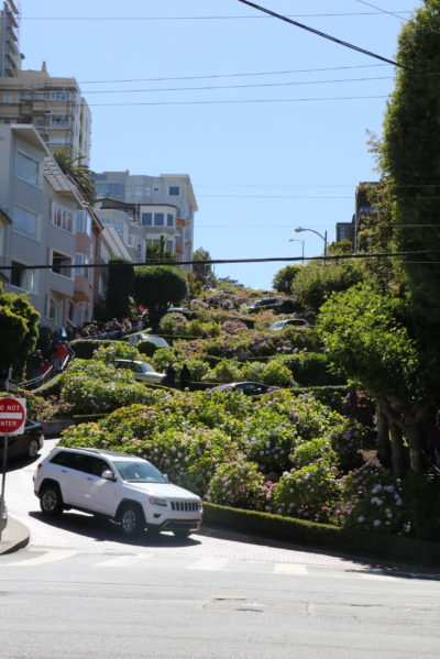 The crookedest street in San Fran - people actually live on it!